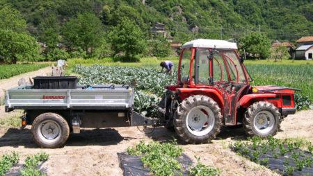 Associazione Produttori Agricoli Ossolani – Ordine di piante da frutto 2018